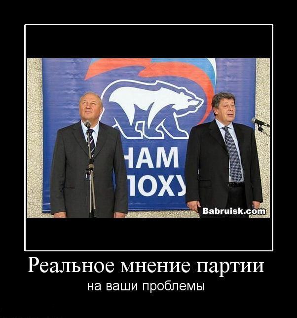 мнение партии